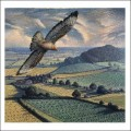 Buzzard In Flight by James Lynch