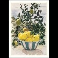 Lemons by Robert O'Rorke