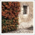 Rustic Wall & Window by Kim Sayer